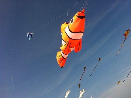 Ameland, Aviator, Nemo, Fish, Beach, Blue Sky, Sunny