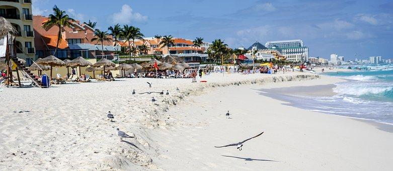 Cancun, Mexico, Beach, Birds, Waves, Tropical, Vacation