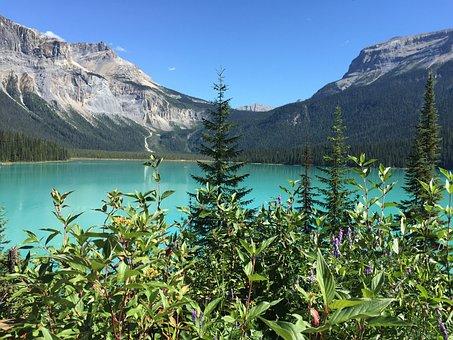 Emerald Lake, Canada, Travel, Water, Lake, Emerald
