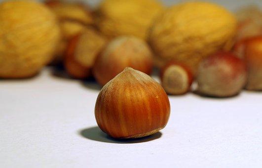 Walnut, Italian, Cane, Shell, Hard, Festive, Split