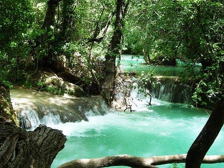 Cascade, Creek, Emerald, Green, Nature, Tree, Forest