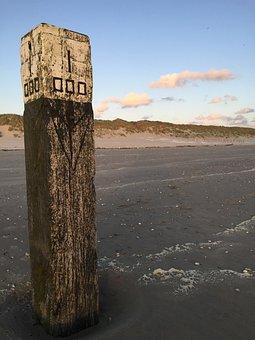 Ameland, Beach, Dog, Holiday, Longing, Holland, Rest