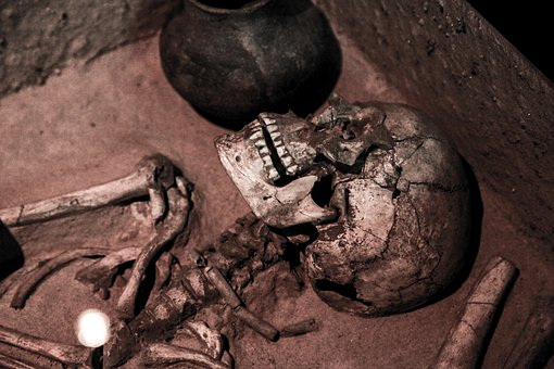 Fractured Skull, Skeleton, Skull, Old, Ancient, Dead