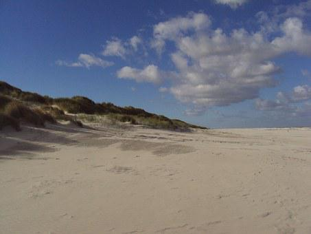 Beach, Salt Marsh, Ameland