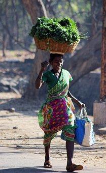 Indian, Vegetables, Seller, Street, Carry, Head, Basket