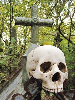 Death, Skull, Skull And Crossbones, Weird, Bone, Horror