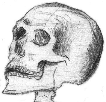 Skull, Halloween, Skull Bone, Skull And Crossbones