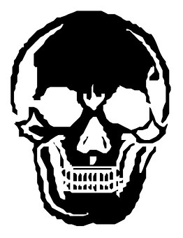 Skull, Human, Skeleton, Halloween, Horror, Spooky