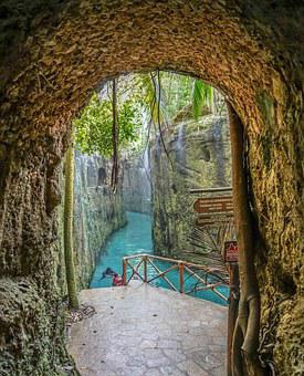 Caret, Cancun, Mexico, Forest, River, Tropical, Nature