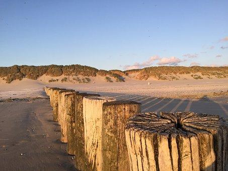 Ameland, Beach, Dog, Vacations, Longing, Holland, Rest