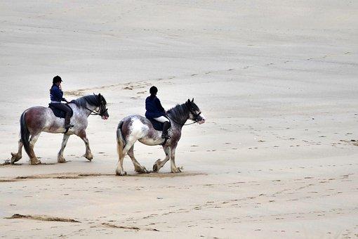 Beach, Horses, Horse Riding, Equestrian, Animal, Sea
