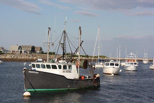 Boat, Ocean, Harbor, Boats, Water, Atlantic, East-coast