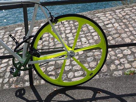 Rear Wheel, Mature, Rim, Spokes, Circuit, Road Bike