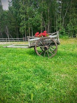 Flower, Cart, Floral Arrangements, Cartwheel, Old, Bike