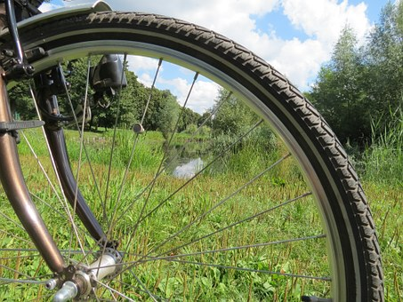 Bike, Wheel, Spokes, Sport, Spoke, Inner Tubes, Tire