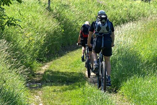 Cyclists, Nature, Meadow, Cycling, Away, Leisure