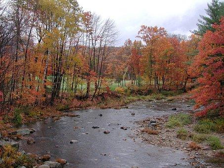 New Hampshire, Jackson, Stream, Brook, Fall Colors