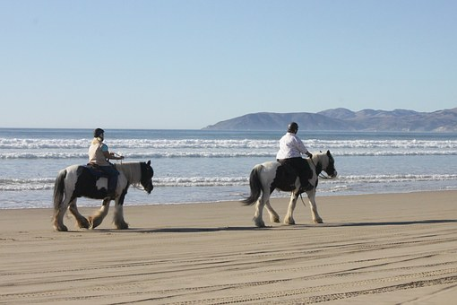 Beach, Horses, Ocean, Outdoor, Rider, Equestrian
