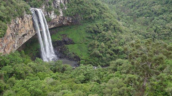 Waterfall, Snail, Cinnamon, Snail Park