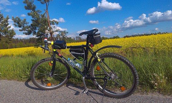 Bike, Rapeseed, Field, Way, Tour, Tourism, Nature