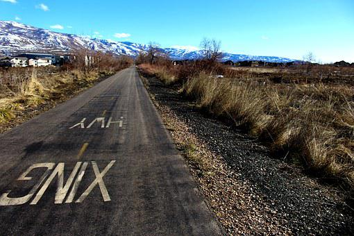 Bike Path, Field, Bike, Path, Outdoor, Active, Ride