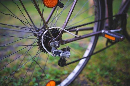 Bike, Bicycle, Derailleur, Wheel, Spokes, Cycling, Ride