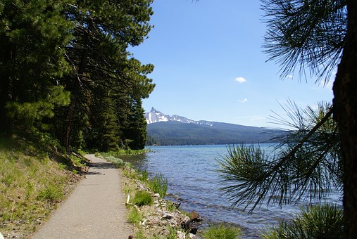 Diamond Lake, Bike Path, Path, Hike, Hiking, Trail