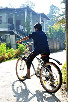 Bicycle, Boy, Morning, Back Light, Road, Sport