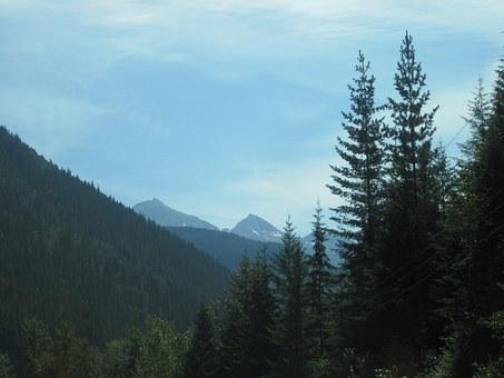 Holiday, Canada, Mountains, Foresttrees, Landscape