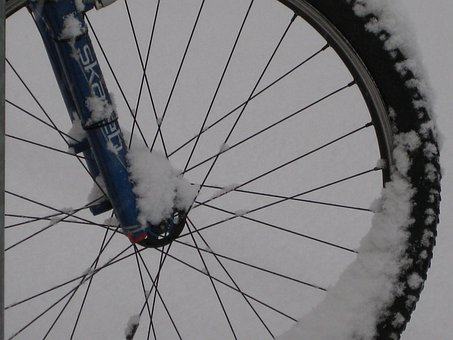 Mountain Bike, Bike, Wheel, Mature, Rim, Spokes