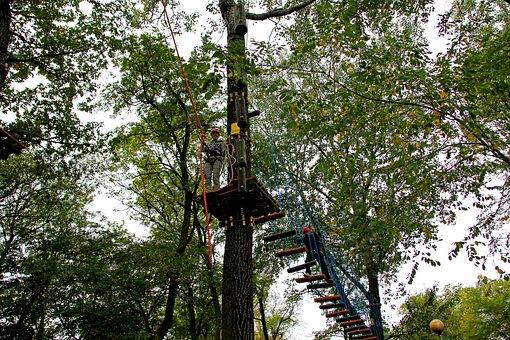 Rope Park, Monkey Grove, Climbing, Fun, Rope, Tree