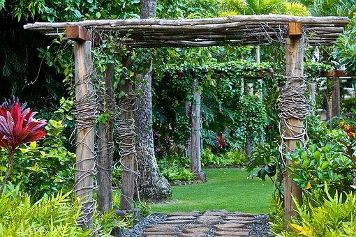 Garden, Retreat, Relaxation, Green, Backyard, Yard