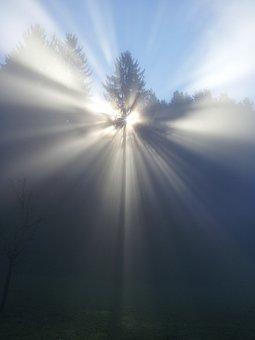 Fog, Tree, Mood, Sun, Beyond, God, Faith, Nirvana