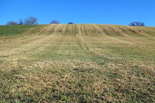 Meadow, Hill, Horizon, Beyond The Horizon