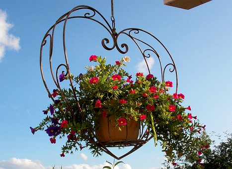 Exterior Decoration, Decoration, Hanging Basket