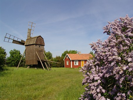 Summer Pictures, Swedish Summer, Oland