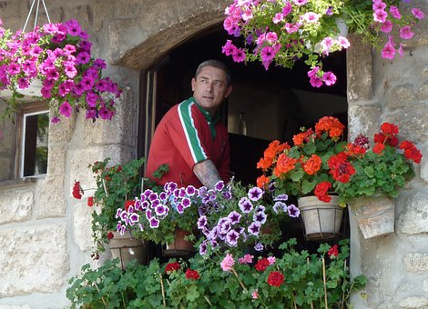 Hanging Baskets, Flowers, Decoration, Person, Man