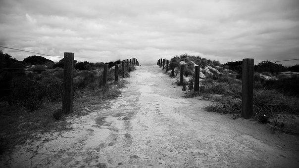 Path, Trail, Beach, Road, Hike, Ramble, Walk, Step