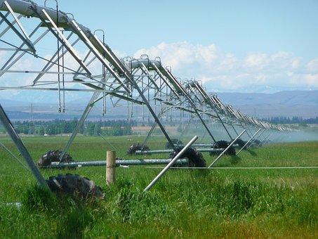 Irrigation, Agriculture, Farming, Sprayer, Sprinkling