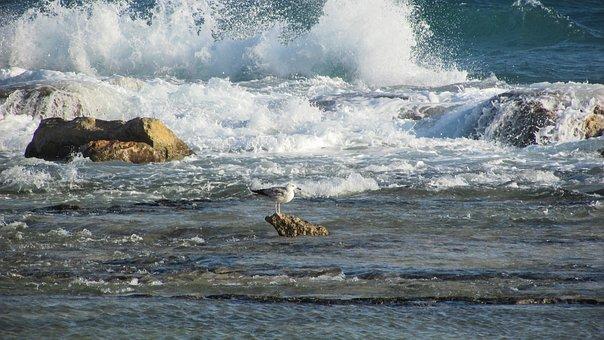 Cyprus, Ayia Napa, Kermia Beach, Rocky Coast, Waves