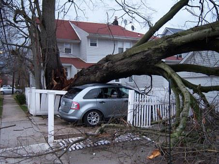 Storm, Damage, Hurricane, Wind, Disaster, Insurance