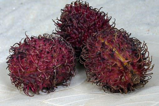 Fruits, Rambutan, Fruity, Exotic