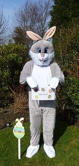 Easter Bunny, Easter Egg Hunt, Rabbit, Fancy Dress