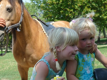 Brothers And Sisters, Horse, Children, Friends, Blond