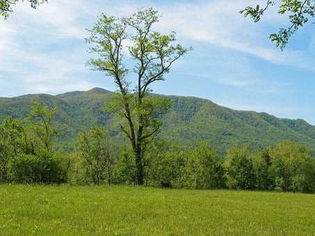 Tennessee, Smoky Mountains, Smokies, Valley, Landscape