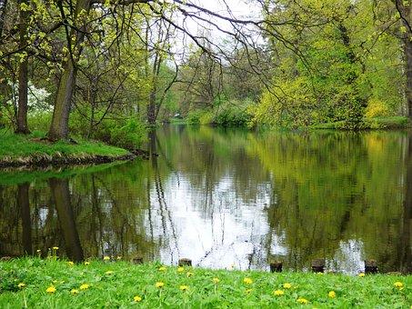 Lake, Water, The Tank, Nature, Reflex, Reflection