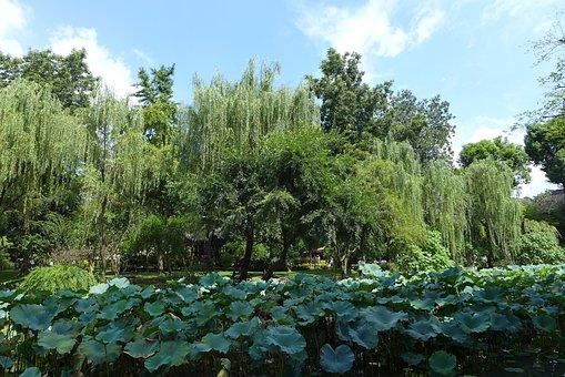Humble Administrator's Garden, Autumn, Lake
