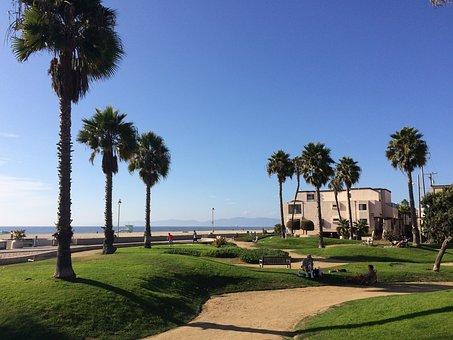 California, Beach, Palms, Landscape, Hermosa Beach