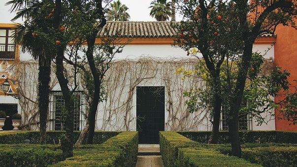 Seville, Spain, House, Shrubs, Trees, Oranges, Vines