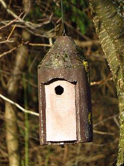 Nesting Box, Aviary, Incubator, Tree, Leaves, Branch